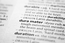Word Or Phrase Dura Mater In A...