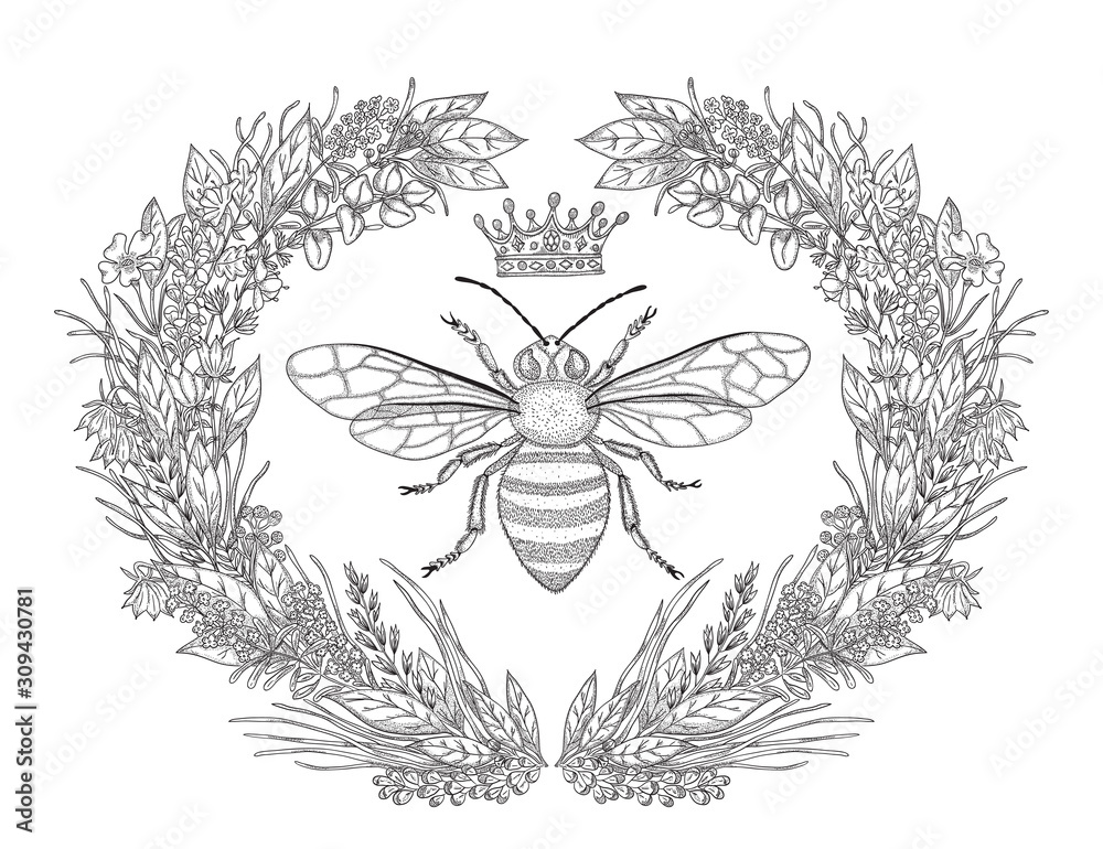 Fototapeta Design for t-shirts with image of wreath of flowers, honey bee and crown. Black and white vector illustration.