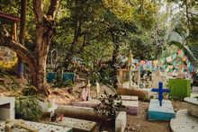 Tropical Mexican Cemetery