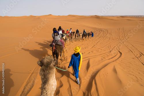 Deserto del Sahara  Marocco