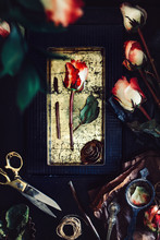 Withered Red Roses And Old-fashuoned Vintage Objects Collected On Table In Dark Environment
