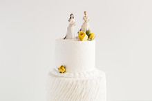Lesbian Wedding Cake With Two ...