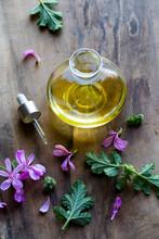 Geranium Plant Facial Oil