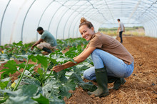 Ecological Agriculture.