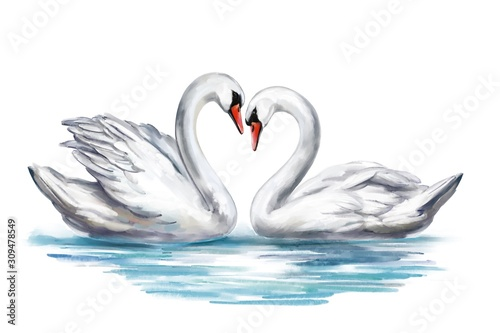 Stampa su Tela two white Swan birds on a pond together, symbol of love, Valentine's day card, w