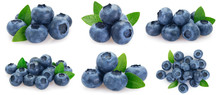Collection Of Fresh Blueberry ...