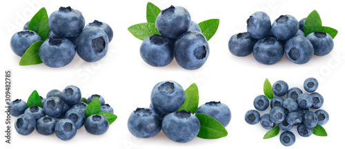 Tela Collection of fresh blueberry on white background