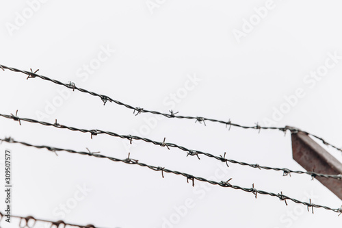 Barbed wire on the fence. Tablou Canvas