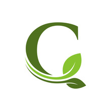 Combination Of Leaf And Initial Letters C Logo Design Vectors