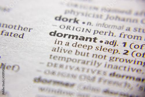 Fotografia Word or phrase Dormant in a dictionary.