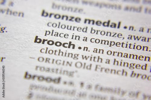 Obraz na plátně Word or phrase Brooch in a dictionary.
