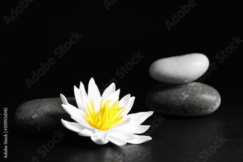 Fotografia Stones and lotus flower on black table. Zen lifestyle
