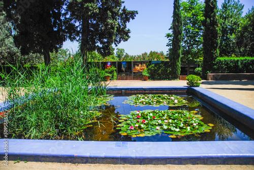 Photo Pond in C'an Altamira gardens