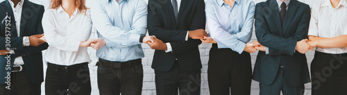 Business team holding hands, standing in row Canvas Print