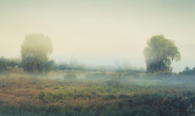 Rural Landscape With Fog In Th...