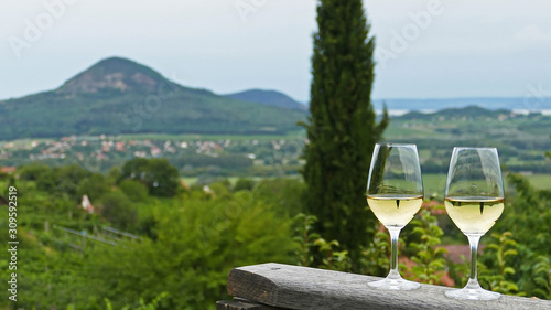 Two glasses of fine riesling wine in the Badacsony region in Hungary out in the Wallpaper Mural