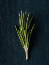 Fresh Rosemary On Dark Blue Background. Overhead Shot.