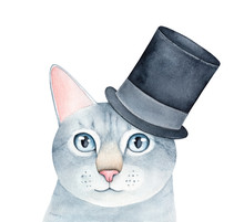 Watercolour Illustration Of Gray Striped Tabby Cat Character Wearing Black Festive Top Hat. Hand Painted Water Color Graphic Drawing On White Background, Cutout Clip Art Element For Design Decoration.