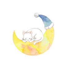 三日月と白猫と青いとんがり帽子