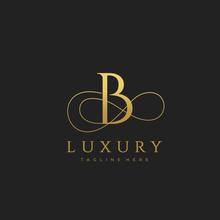 B Luxury Letter Logo Design Vector