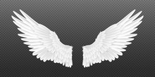 Realistic Angel Wings. White I...
