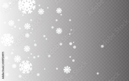 Obraz Snowflakes winter season background design with particles. White snow background. White particles dust with transparent background - fototapety do salonu