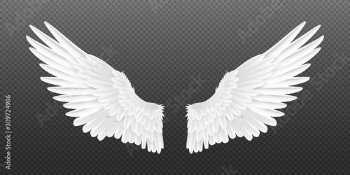 Realistic angel wings Canvas Print