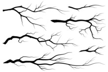 Seamless Pattern With Branches Of Trees