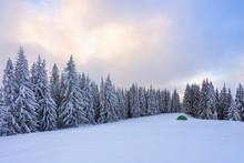 Majestic Winter Scenery. Fanta...
