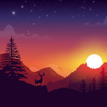 Deer On A Mountain With Sunset...