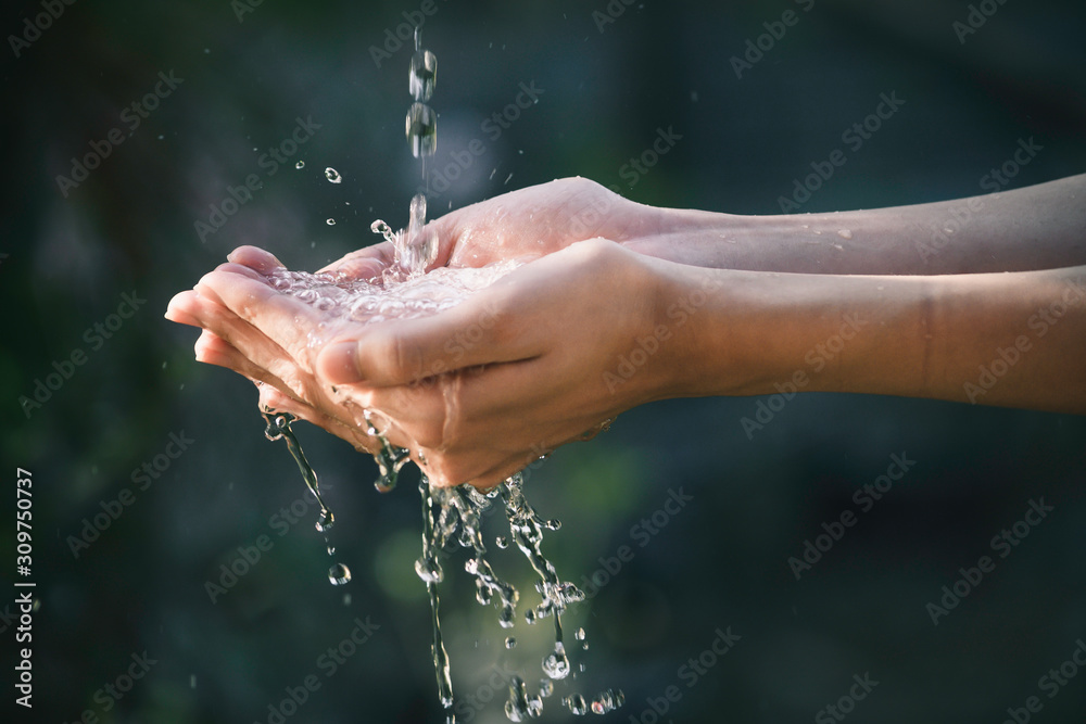 Fototapeta closeup water flow to hand of women for nature concept on the garden background.