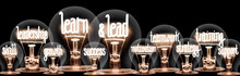 Light Bulbs With Learn & Lead ...