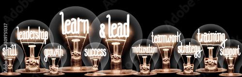 Photo Light Bulbs with Learn & Lead Concept