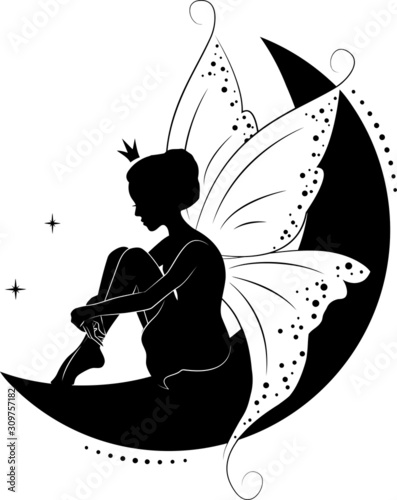 Photographie Fairy vector illustration