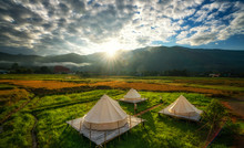 Countryside Homestay In Rice F...