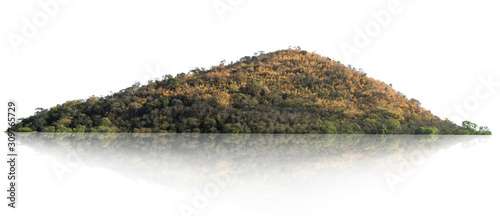 Fototapeta rock mountain hill with  green forest isolate on white background obraz