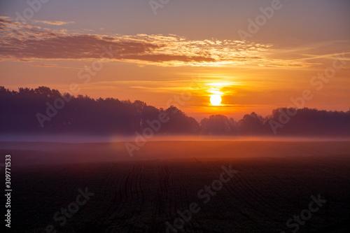 Zachód słońca jezioro drzewa mgła - 309771533