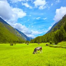 Beautiful Mountain Panorama In...
