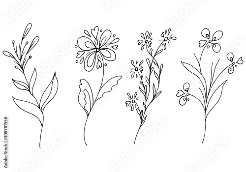 Fototapety, obrazy: Big outline set of summer tropical flowers. Floral botanical flower set isolated on white background. Hand drawn vector collection. Botanical Hawaii nature. Tropical palm icon. Hawaiian collection