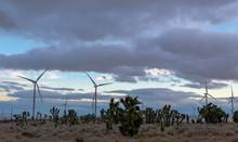 Wind Turbines And Joshua Trees In The Mojave Desert