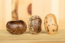 Group Of Three Whole Speckled ...