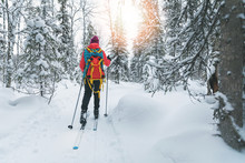 Ski Touring - Woman With Skis ...