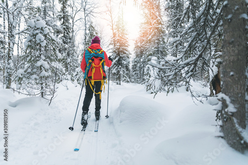 Vászonkép ski touring - woman with skis on a snowy winter forest trail
