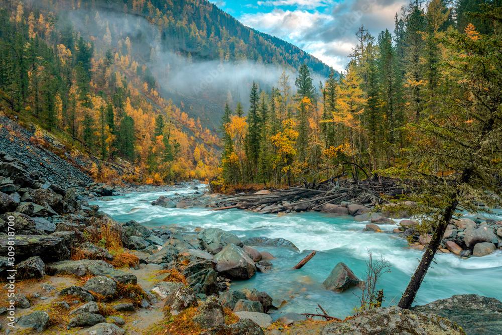 Fototapeta Morning on the Akkem river in autumn