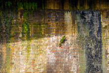 Rusty Brick Wall Under Railway...