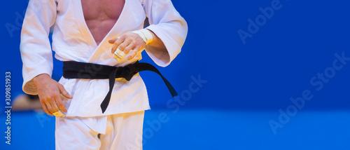 Fotografie, Obraz Judo fighter poses in white kimono with black belt