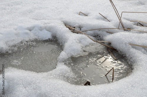 Fotografie, Obraz Early spring close-up: melt water in loose gray ice