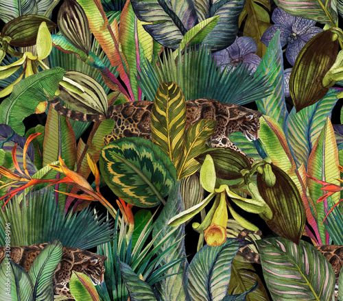 Obraz premium Tropikalny wzór dżungli z mgłą i tropikalnymi kwiatami.