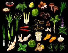 Cooking Spices, Thai Cuisine Herbs And Seasonings. Vector Thailand Spices, Condiments Ans Herbal Flavorings, Ginger Root, Lemongrass And Kaffir Lime, Coriander, Lotus And Shiitake Mushrooms