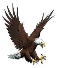 Fototapeta Ptaki Flying bald eagle